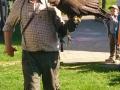 Draví ptáci- historické sokolnictví 11.5.2016