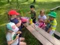 Včeličky na výletě - Arboretum Nový Dvůr 11.6.2021