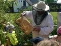 Včelky: Návštěva včelaře - pana Musila