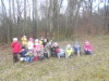 Včelky: Strojíme stromečky pro lesní zvířátka  16.12.2014