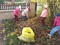 Včelky uklízejí zahradu 6.11.2017